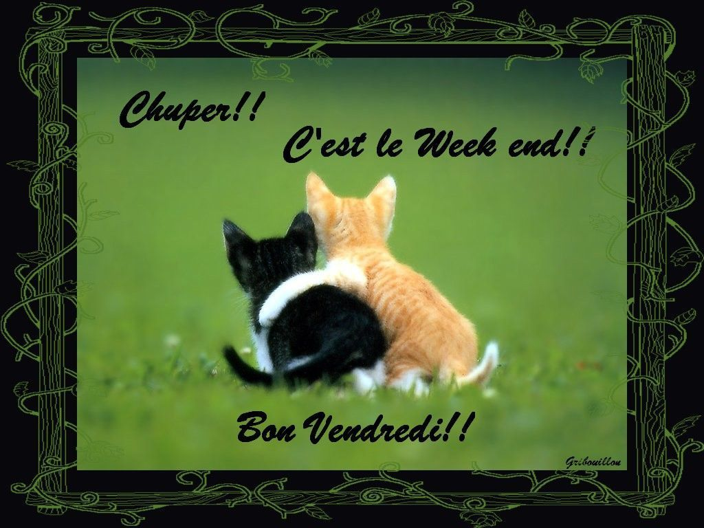 Bon Vendredi a tous!!